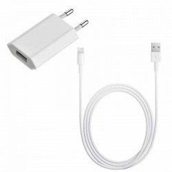 Original Apple 5W MD813 + Cable MD818 Lightning